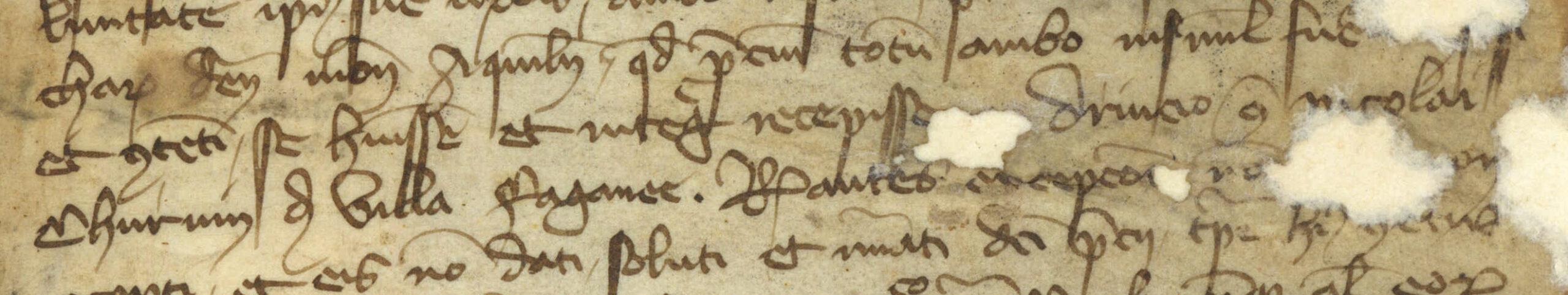 Pergamena del 28 ottobre 1395 nella quale si evince che Nicolò Corvino (Churvin) della Villa di Fagagna era già morto. dall'Archivio del Dott. Alberto Asquini