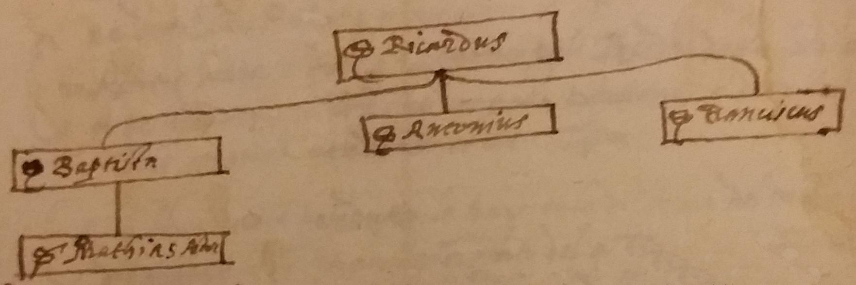 Parte di albero genealogico da atto notarile, dall'Archivio del Dott. Alberto Asquini